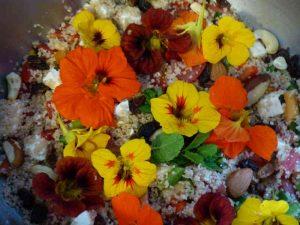 salade fleurs joia viva